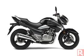 SuzukiGW250-001