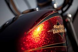 HarleyDavidsonSportsterSeventyTwo_011