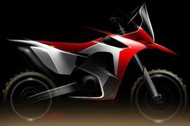 Honda Dakar 2013 - 001