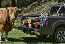 Renault Alaskan dCi190 statica ambientata