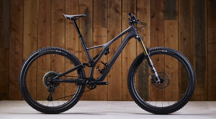 Specialized Stumpjumper 2018 laterale statica