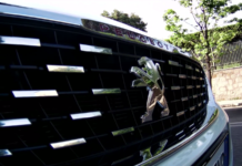 Peugeot 308 SW GT Line dettaglio calandra